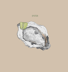 oyster oyster farm and oyster vector image