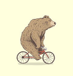 bear is riding a bicycle vector image