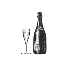 bottle of champagne with a glass of champagne vector image