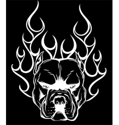 Bull dog flame tattoo in black background vector
