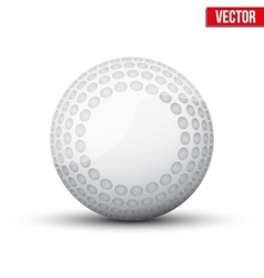 Classic Hockey Field Ball vector