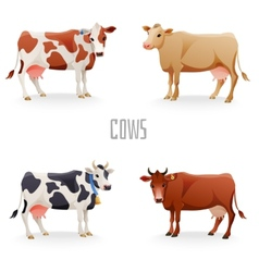 Different cows vector