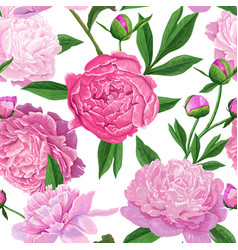 Floral seamless pattern with pink peony flowers vector