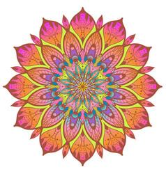 flower color mandala vector image