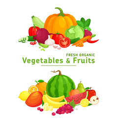 fresh organic healthy vegetables and fruits vector image