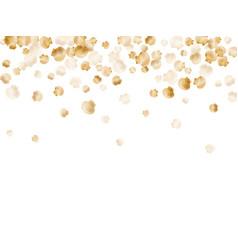 Gold seashells pearl bivalved mollusks vector