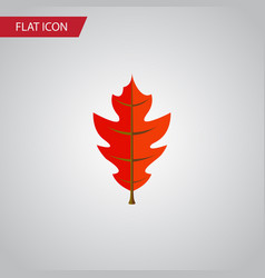 isolated linden flat icon frond element vector image