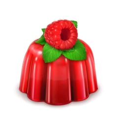 Raspberry jelly detailed vector