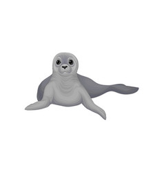 Seal sea animal inhabitant of cold seas vector