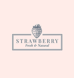 strawberry abstract sign symbol or logo vector image