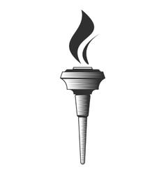 Torch vector