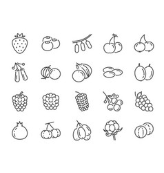 Wild berry line icon set vector