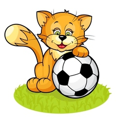 Cat with soccer ball vector