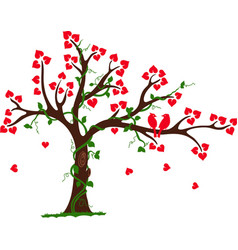 Love Tree with Heart liana and vine vector image vector image