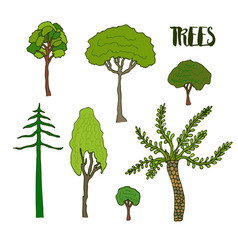 hand sketch trees set collection of tree vector image