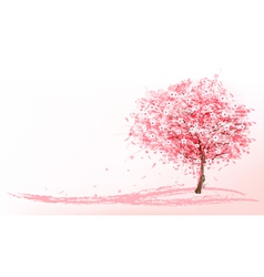 Beautiful background with a pink blooming sakura vector image