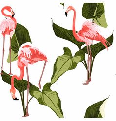 colorful floral pattern with flamingo and leaves vector image
