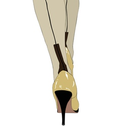 High heels and silk stockings vector