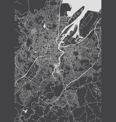 Monochrome detailed plan city of belfast vector