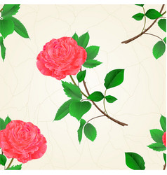 Seamless texture pink rose flower twig vector