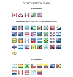 Glossy button flags - America Original colors vector image