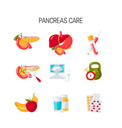 Pancreas care icons in flat style vector