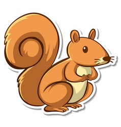 sticker design with cute squirrel isolated vector image