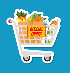 supermarket shopping trolley cartoon vector image