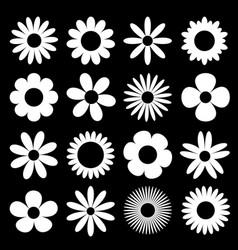 White daisy chamomile silhouette icon camomile vector