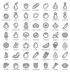 Fruits Vegetables outline vector image vector image