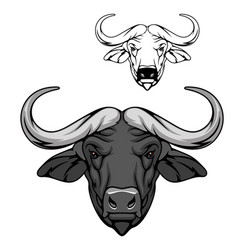 Buffalo bull head icon wild animal mascot vector