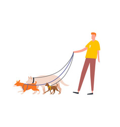 funny guy holding pack dogs on leash vector image