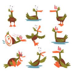 Funny male mallard duck set comical bird cartoon vector