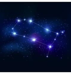 Gemini Realistic Zodiacal Symbol vector
