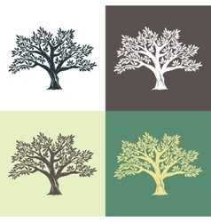 Hand drawn graphic argan trees set vector