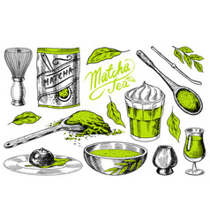 Matcha green tea set organic powder bamboo whisk vector