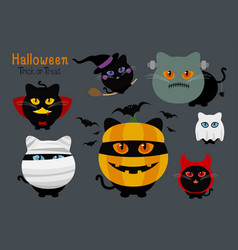 set of halloween cats costume vector image