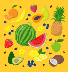 summer fruits and berries set vector image
