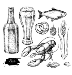 Beer set Alcohol beverage hand drawn vector