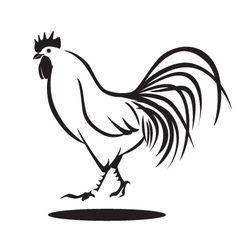 Chicken graphic vector