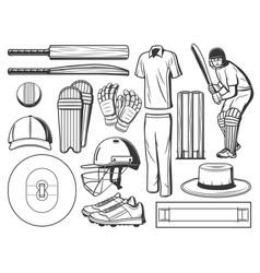 Cricket batsman with sport ball wicket and bats vector