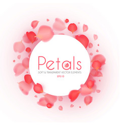 flying petals banner cosmetics wedding and vector image