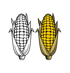 Logo and symbol of corn for thanksgiving day vector