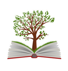 knowledge tree from open book vector image