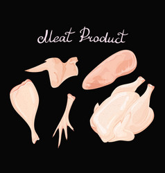 set of chicken meat collection of meat vector image vector image