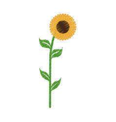 sunflower spring natural icon vector image vector image
