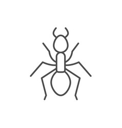 Ant line outline icon or insect concept vector