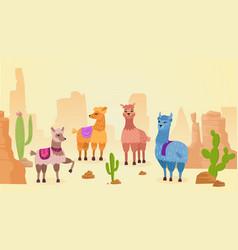 lovely lamas character hand drawn cartoon vector image