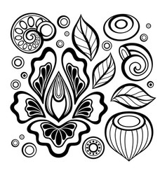 monochrome set of floral design elements in vector image