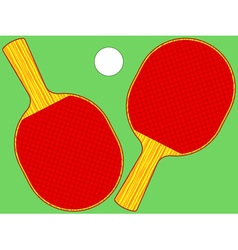 Rackets vector image